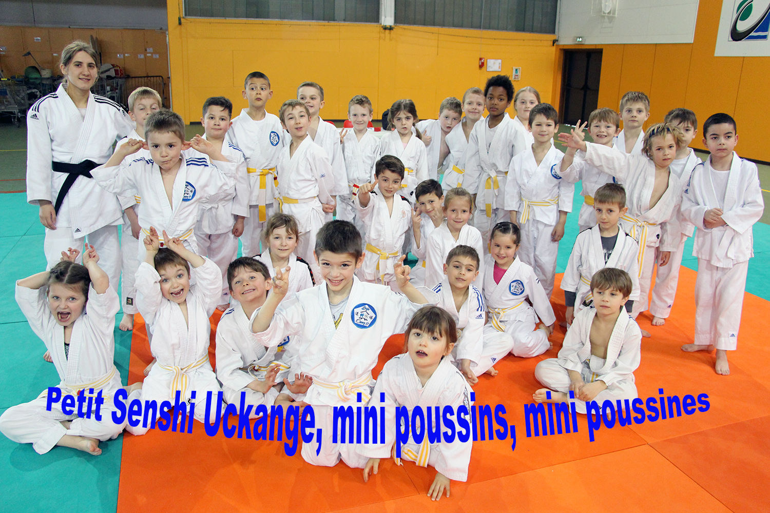 mini poussins uckange small